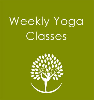 Yogiblossom Yoga Classes And Courses Seattle